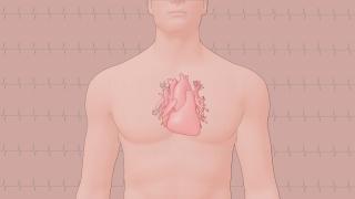 Propedêutica Cardiovascular na Antenção Básica