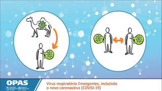 Doenças ocasionadas por vírus respiratórios emergentes, incluindo o COVID-19